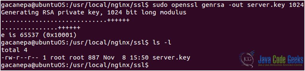 Nginx SSL configuration guide (Ubuntu 12.04 LTS) | System Code Geeks ...