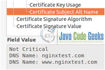 Figure 16: Nginx SSL configuration guide: Subject Alternative Names